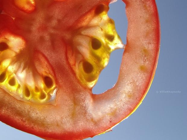 tomato sky